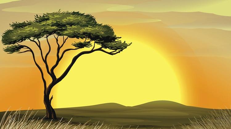 Landskap Afrika
